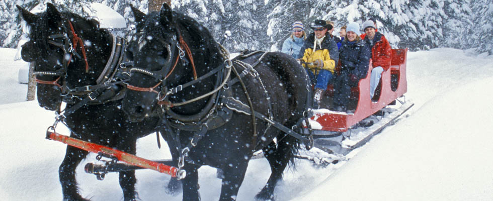 Rocky Mountain Sleigh Ride in Durango Colorado